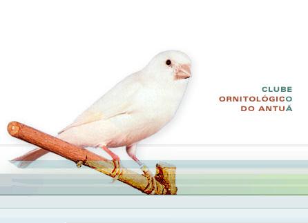 campionato_ornitologico